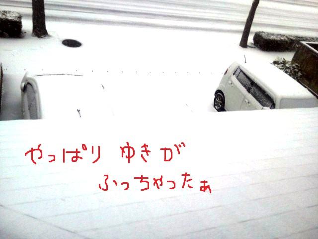 Nec_0304